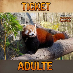 TICKET ENTRÉE ADULTE